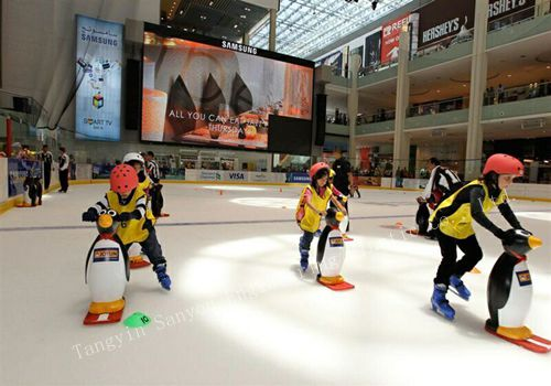 application ice rink board